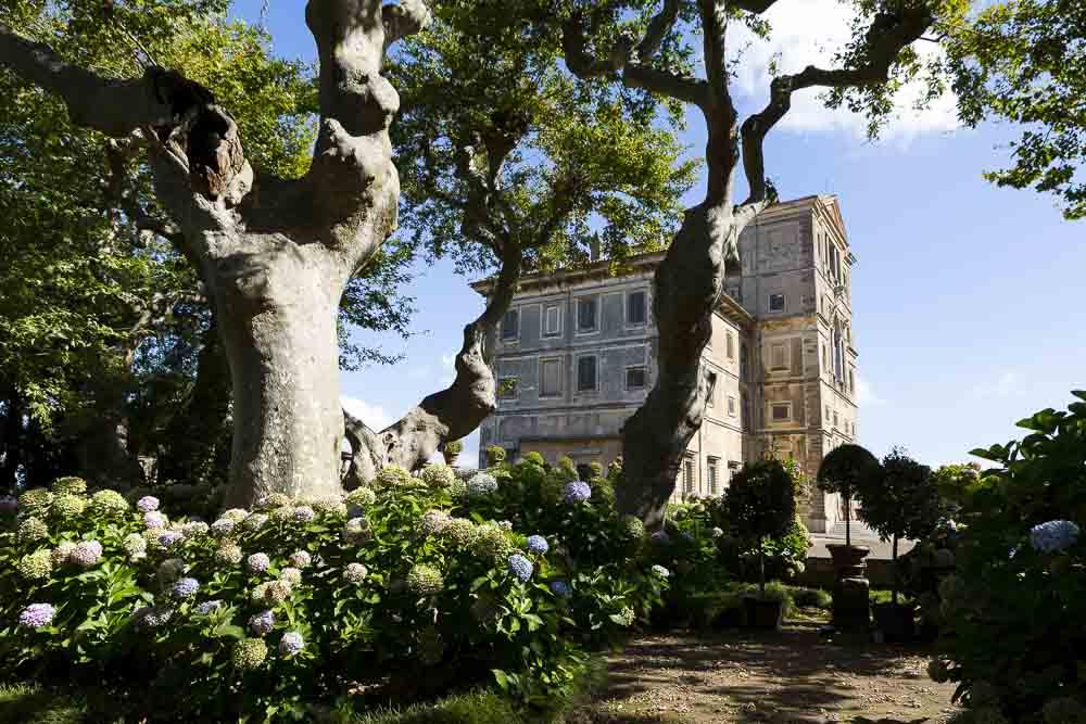 Gardens Villa Aldobrandini. Frascati. Italy.