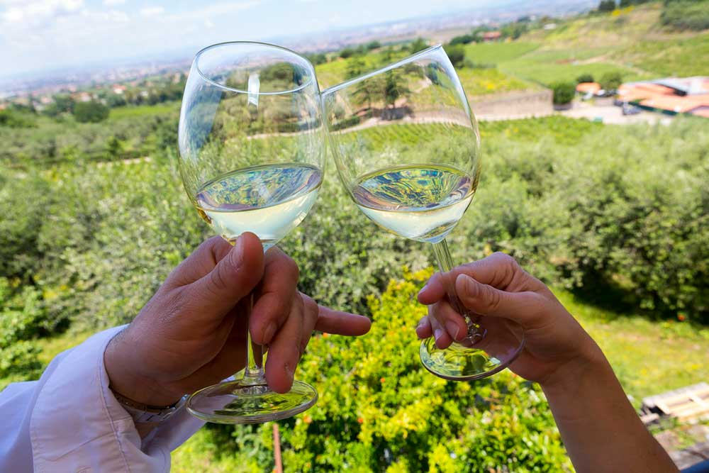 Couple toasting during a wine tasting photo tour