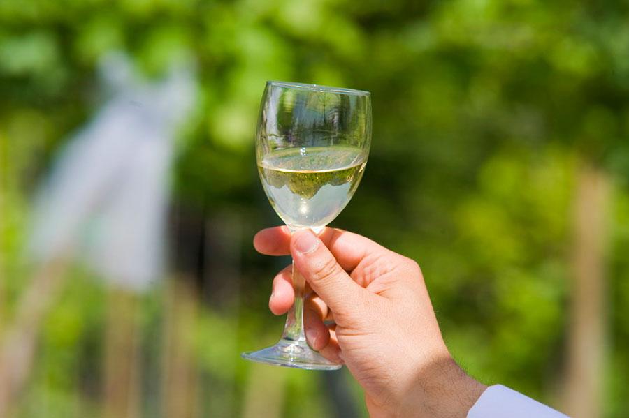 White wine from the Chianti region
